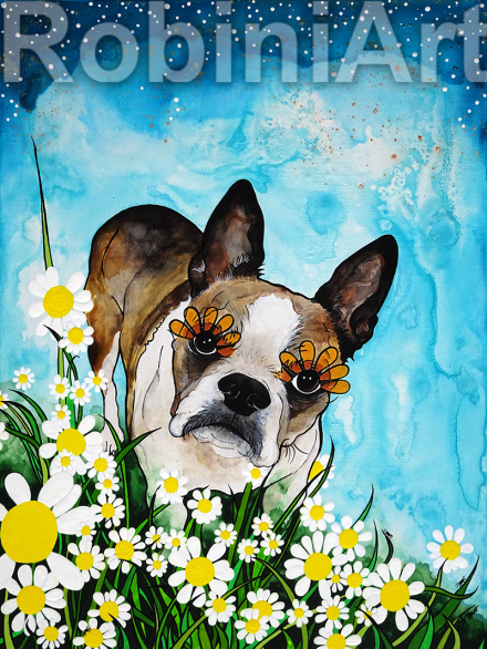 Boston Terrier Riley by Robin Arthur RobiniArt
