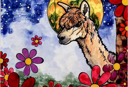 Alpaca-by-Robin-Arthur-aka-RobiniArt_Paonia_2017_900