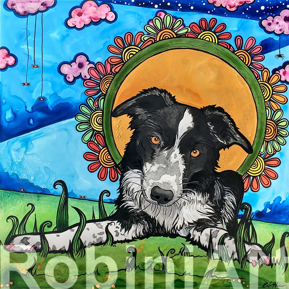 border collie pet portrait by robiniart