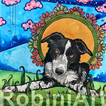 border collie pet portrait by robiniart
