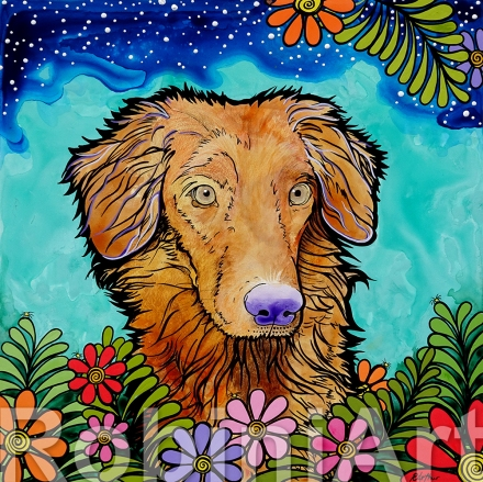 nova scotia duck tolling retriever pet portrait robiniart